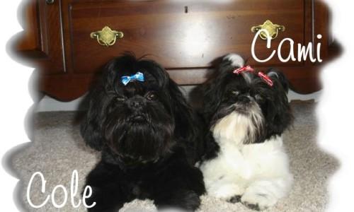 Cami & Cole