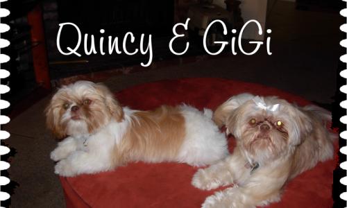 Gigi & Quincy