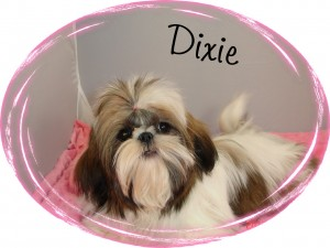 Dixie_22710 014