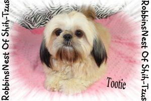 Tootie_11317 012